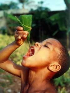 Acqua pura: La nostra principale esigenza