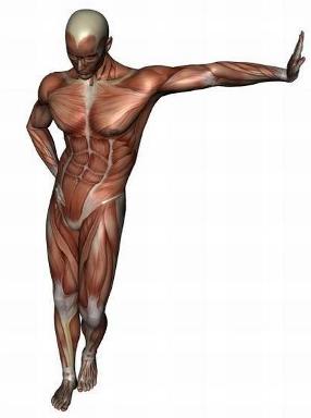 prostatite dolore pelvico