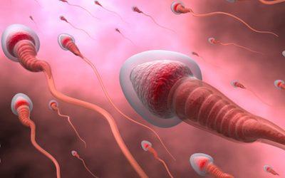 Sangue nello Sperma: Sintomi, Cause e Rimedi