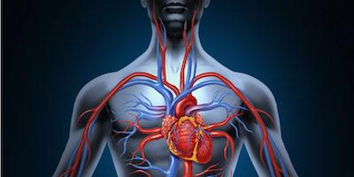 migliorare circolazione sangue