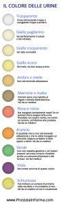 colore delle urine