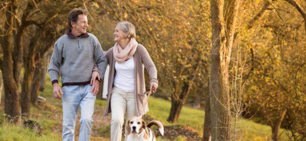 Cosa Fa Bene Alla Prostata? Cibi e Stile di Vita