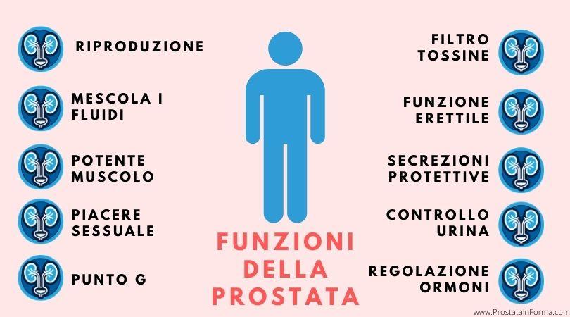prostata a cosa serve