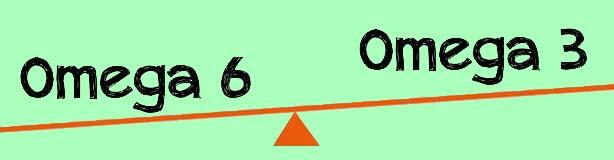 equilibrio omega 3 omega 6